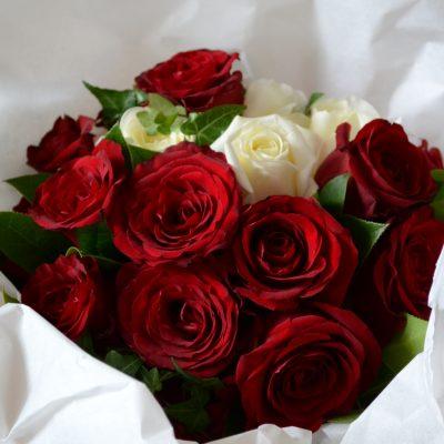 Buchet trandafiri rosii Daisy