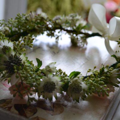 Coronita delicata si fresh din eucalypt si astrantia roma
