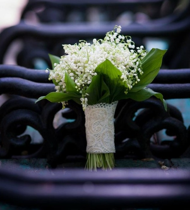 Miroase A Primavara Daisygarden