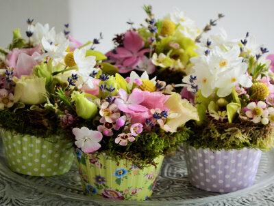 Briose cu flori proaspete